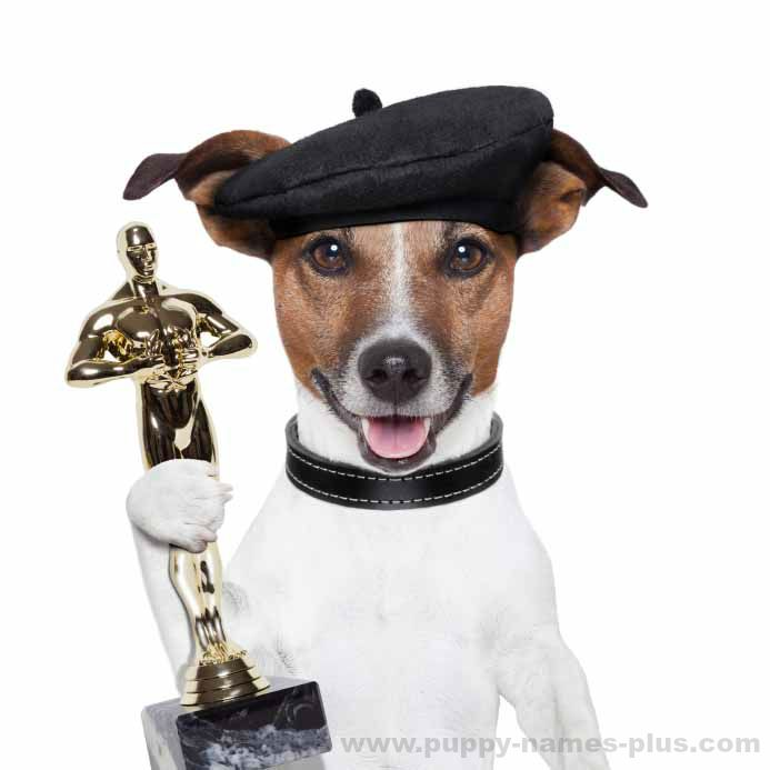 Celebrity dog accepting the Academy Award